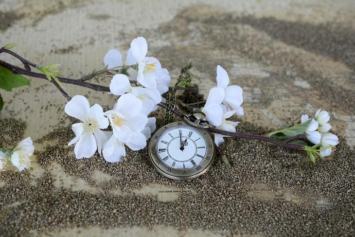 שעון כיס על חול לצד פרחים