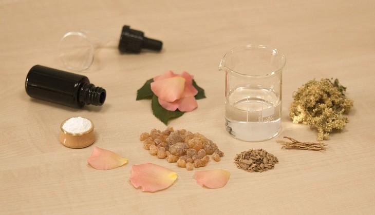 כלי מעבדה, עלי כותרת של ורדים וזרדים שונים