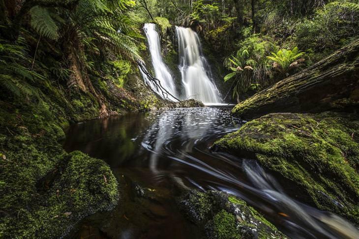 תמונות מרהיבות של אוסטרליה - מפלי הוגארט (Hogarth Falls) בטזמניה