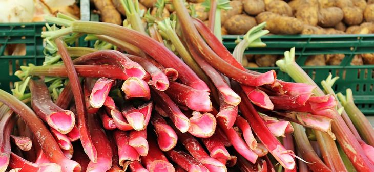 סודות הטיפוח של סבתא: ירק הרַבַּרבֶּר מוצב בדוכן בשוק