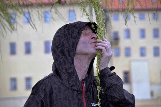 מבחן אישיות: גבר מריח עלים שיורדים מעץ