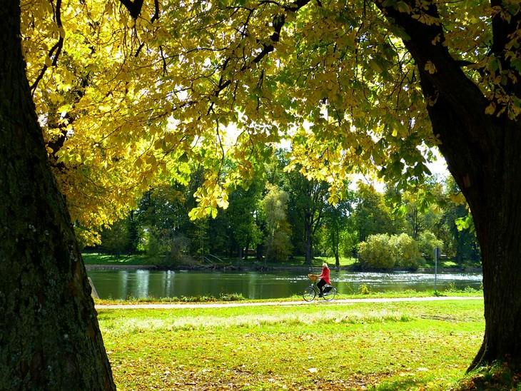אישה רוכבת על אופניים ליד נהר הדנובה