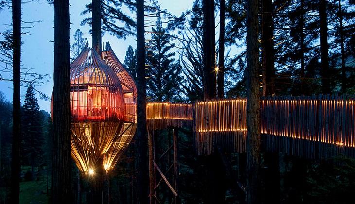 מסעדות מוזרות: בית העץ רדוודס, וורקווט, ניו זילנד