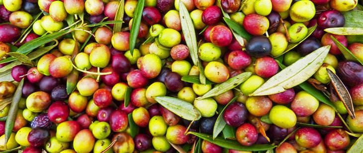 יתרונות בריאותיים של זיתים: ערימה של זיתים ועלי עץ זית