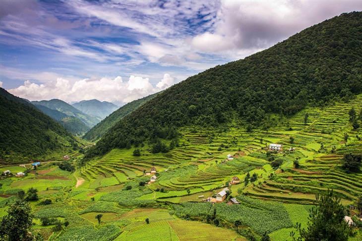 מסע בתמונות בדרך המשי: טרסות בנפאל