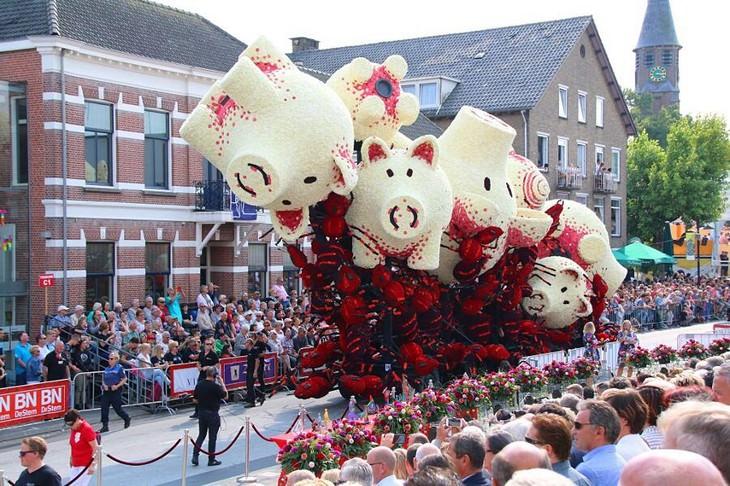 פסטיבל הפרחים בזונדרט 2017: חזירים