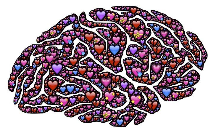 הורמון האהבה - אוקסיטוצין: איור של מוח עם לבבות עליו