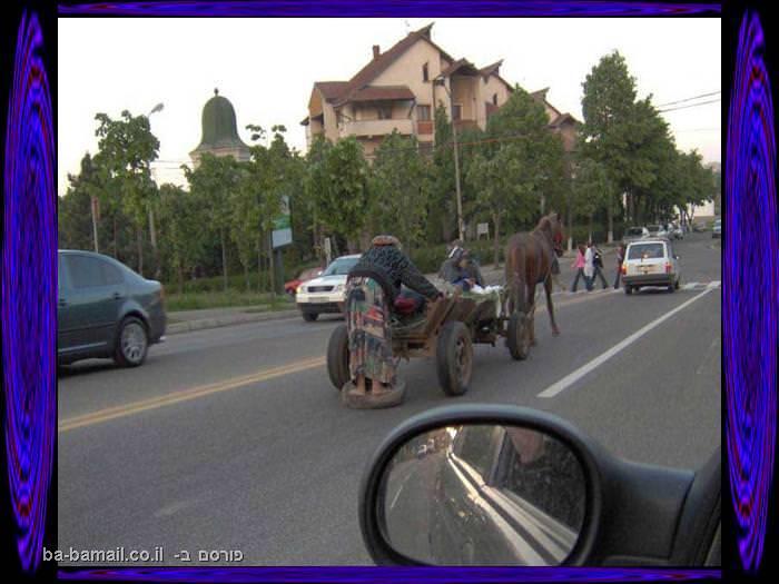 עגלה עם סוסה