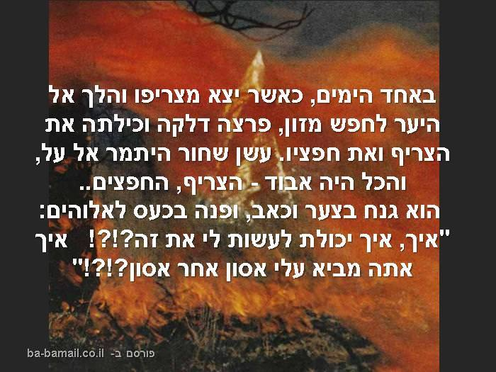 מוסר השכל,סיפור קצר, אי בודד, אש, שריפה