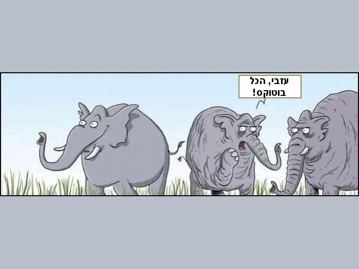 קריקטורות מצחיקות - חזק!
