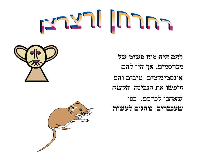 כמה לקחים חשובים לחיים שנלמדים דווקא מעכברים
