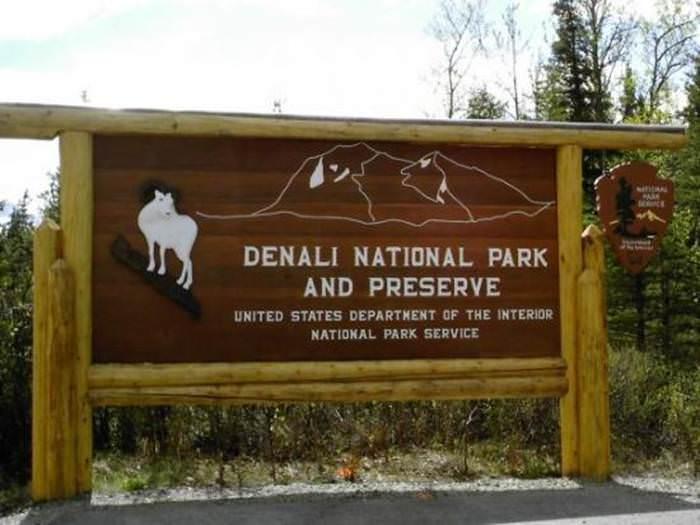 הפארק בו דובי גריזלי משוטטים הם עניין טבעי