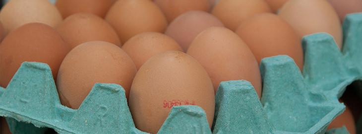 ביצים באריזת קרטון
